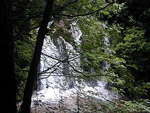 甲賀市信楽町三筋の滝